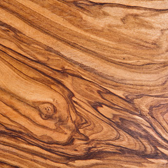 Olive texture wood sample