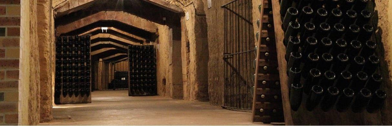 Baron Albert wijnkelder