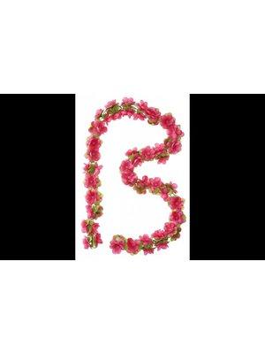 Basil Bloemenstreng Basil Fuchsia