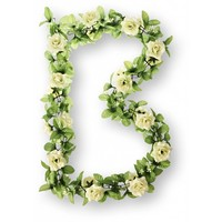 Bloemenstreng Basil Rozen-Wit