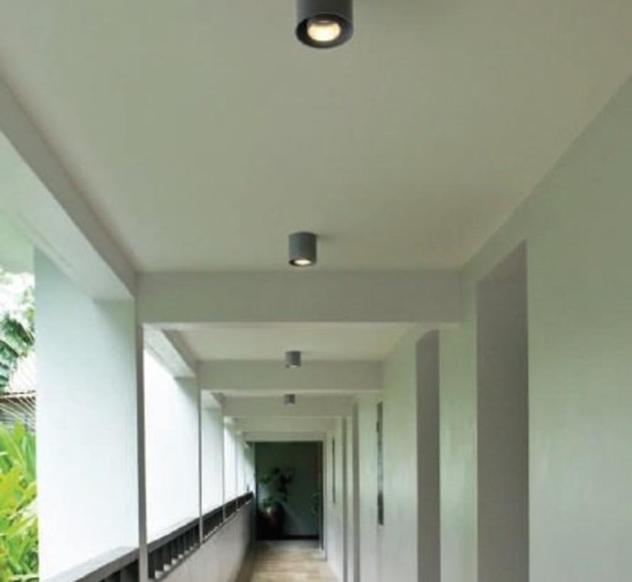 Ray outdoor 1.0 LED  surface mounted spot 8Watt dimmable