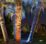 Ground recessed spotlights