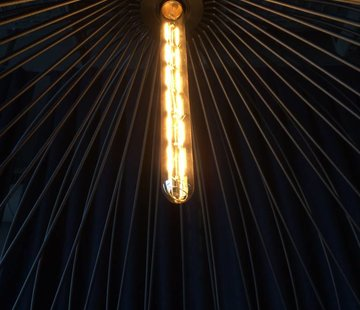 Wever & Ducre T30-300-2700 Led filament buislamp 8W-2700K dim