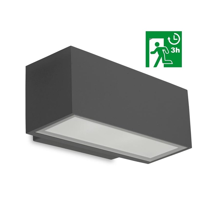 Afrodita Led down wall fixture with 3-hour emergency 19Watt IP65