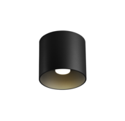 Wever-Ducre Ray 1.0 PAR16 surface mounted spot GU10 dimmable
