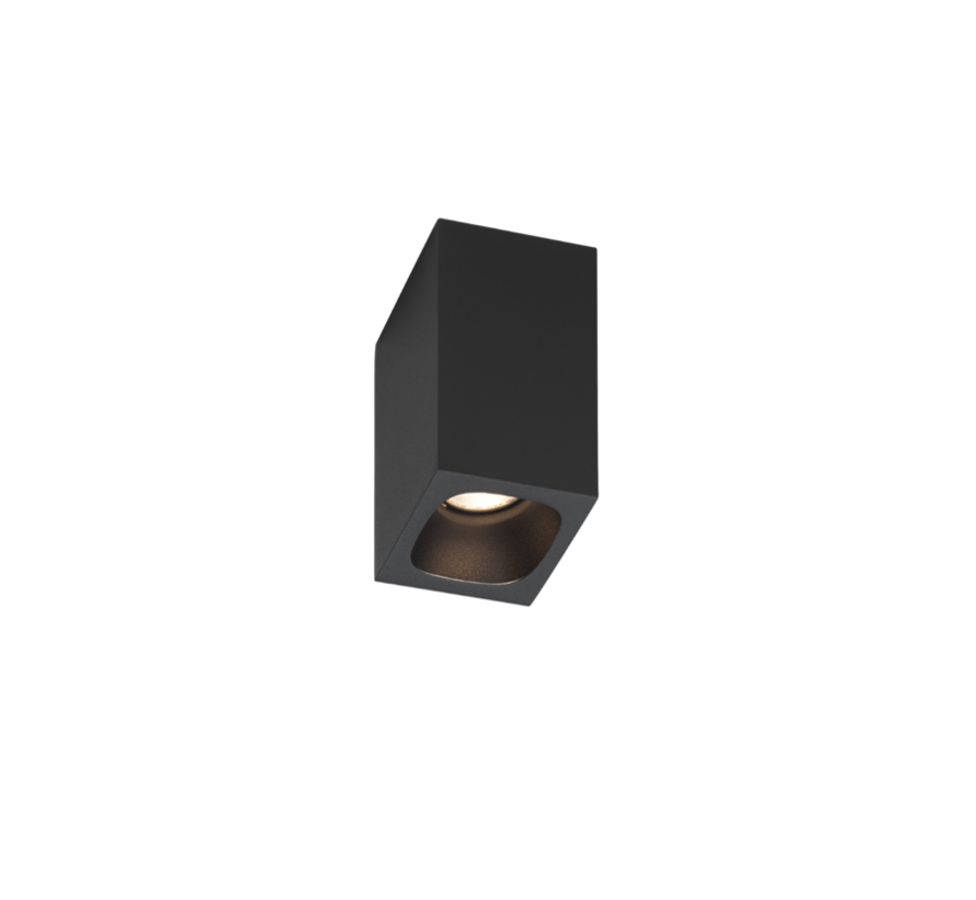 Pirro ceiling surface 1.0 LED 4Watt dimmable