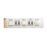 QX Wave IP62 5 mtr 24V-19.2W RGB + W LED strip 60 leds / p.mtr