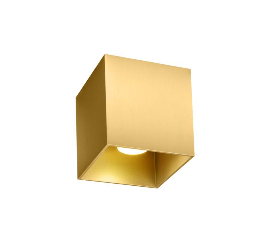Box 1.0 PAR16 ceiling surface GU10 dimmable in 6 colours