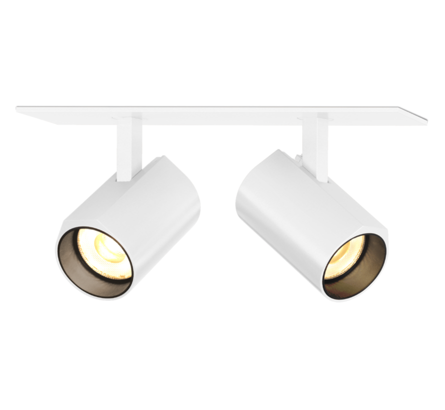 Ceno 2.0 LED double ceiling recessed spot 2x6W-350mA