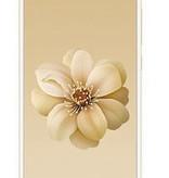 Xiaomi Xiaomi Mi A2 4GB 32GB Global Version