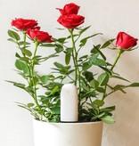 Xiaomi Xiaomi Flora Plant Sensor