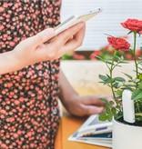 Xiaomi Xiaomi Mi Flower Care Plant Sensor