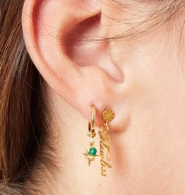 Flawless earrings