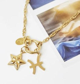 Ladybugs Charms Zodiac - sterrenbeeld Goud & Zilver