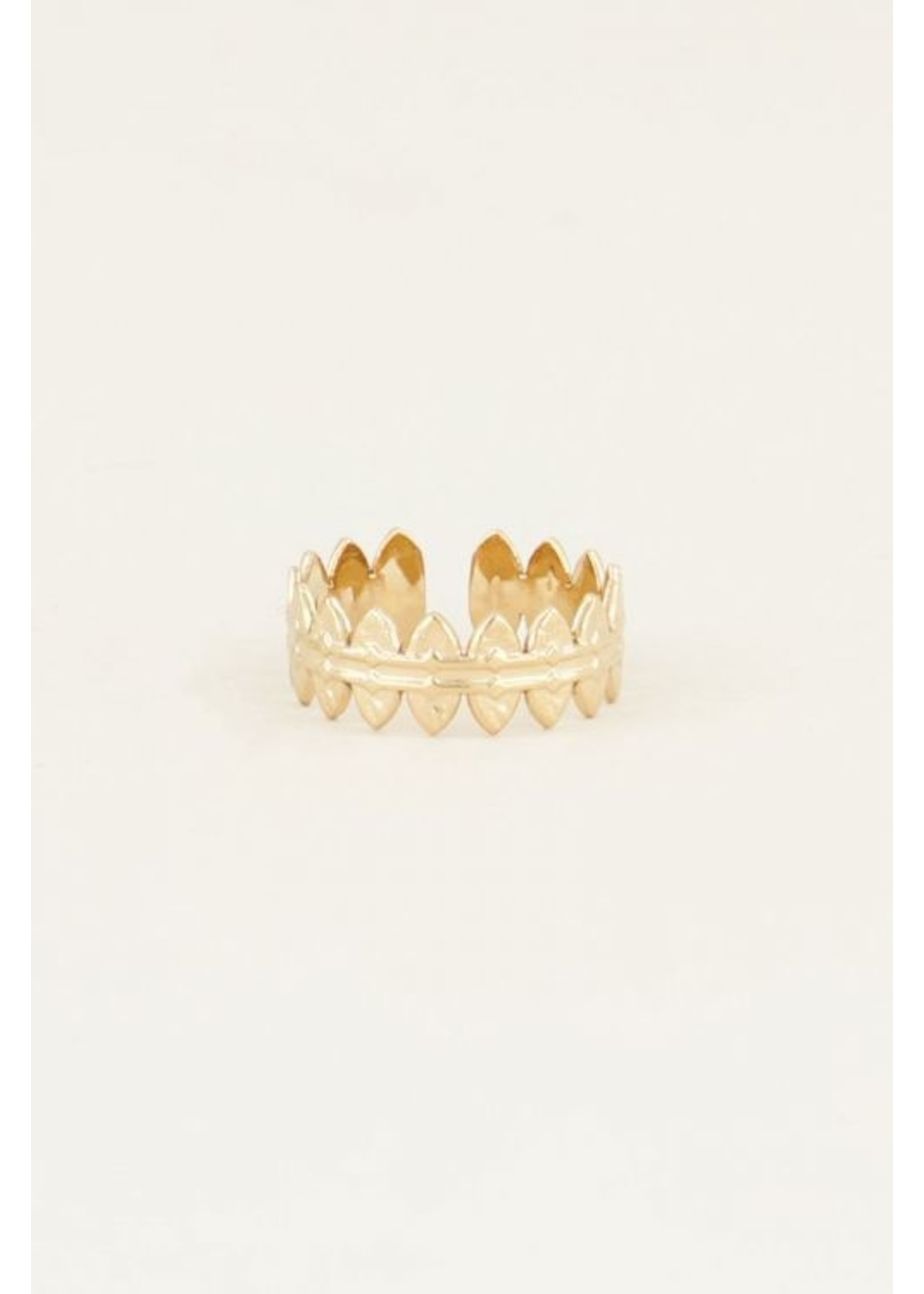 My Jewellery Ring met ovaaltjes GOUD