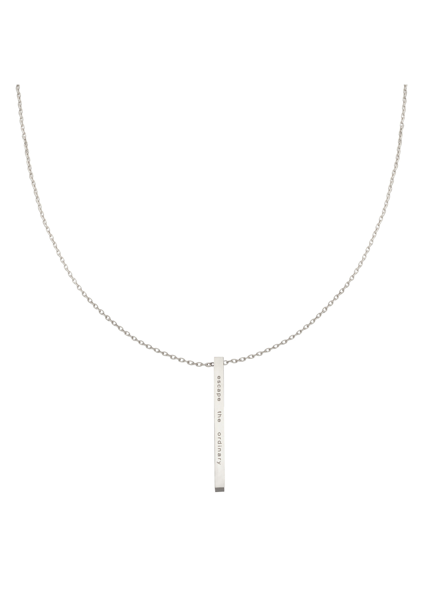 Ladybugs Ketting stainless steel Take a walk on the wild side  ZILVER