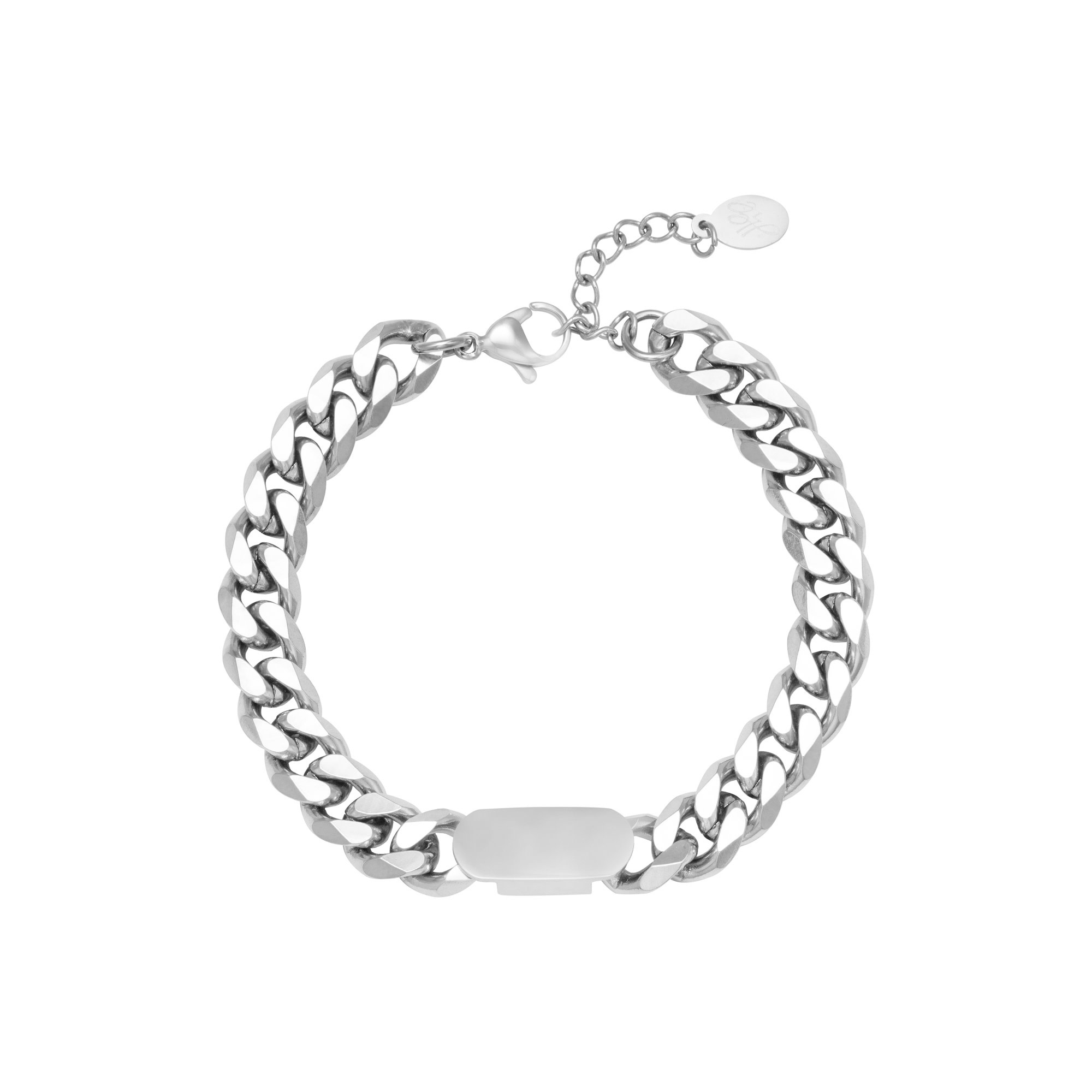 Ladybugs Armband stainless steel CHUNKY CHAIN ZILVER