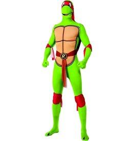turtles raphael