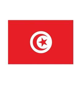 vlag Tunesië 90 x 150 cm