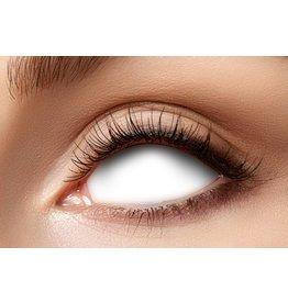 Lenzen sclera blind white visible