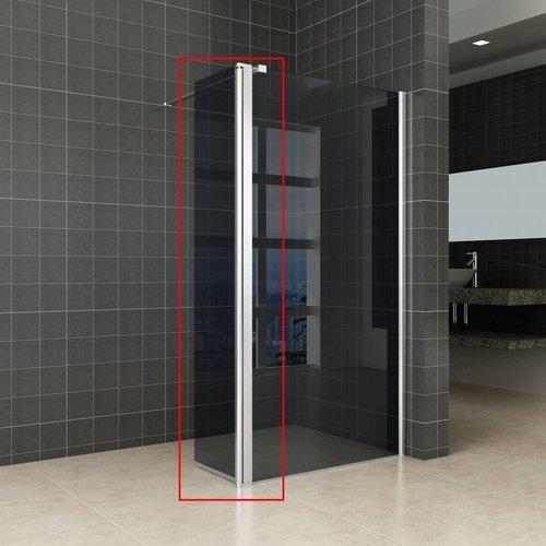 Zijwand Voor Inloopdouche Met Scharnierend Profiel 35X200 Cm 10 Mm Nano Rookglas