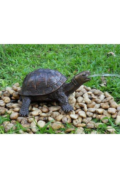 Schildkrötenbrunnen