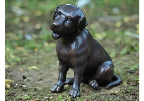 BronzArtes Bronzen Beeld: Kleine labrador