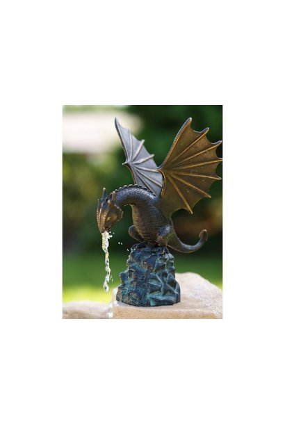Little dragon on rock fountain