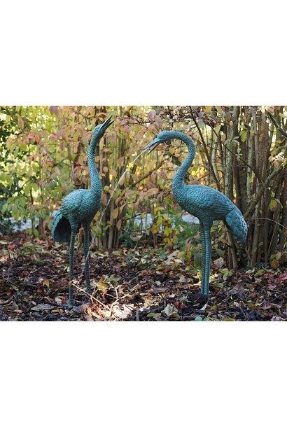Paar kraanvogels