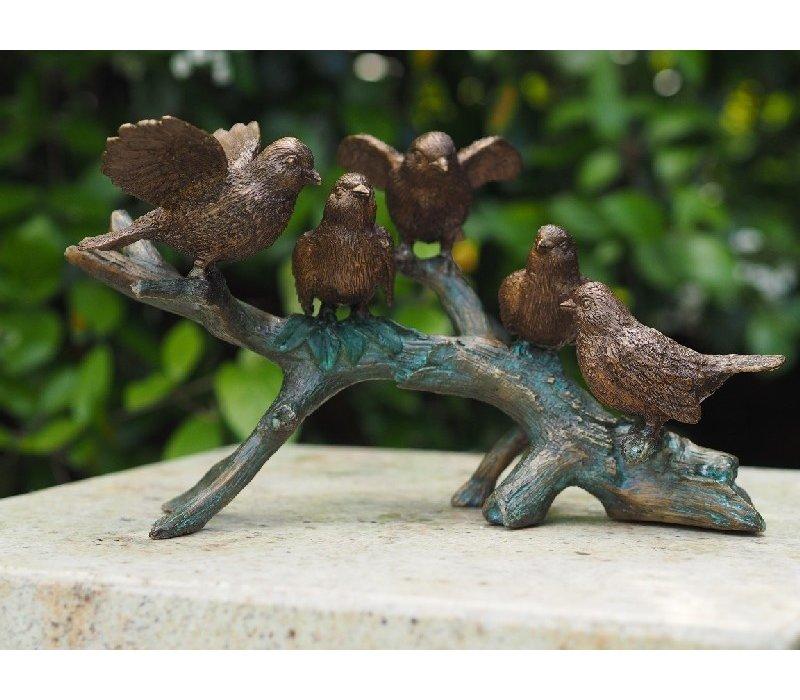 Birds on branch