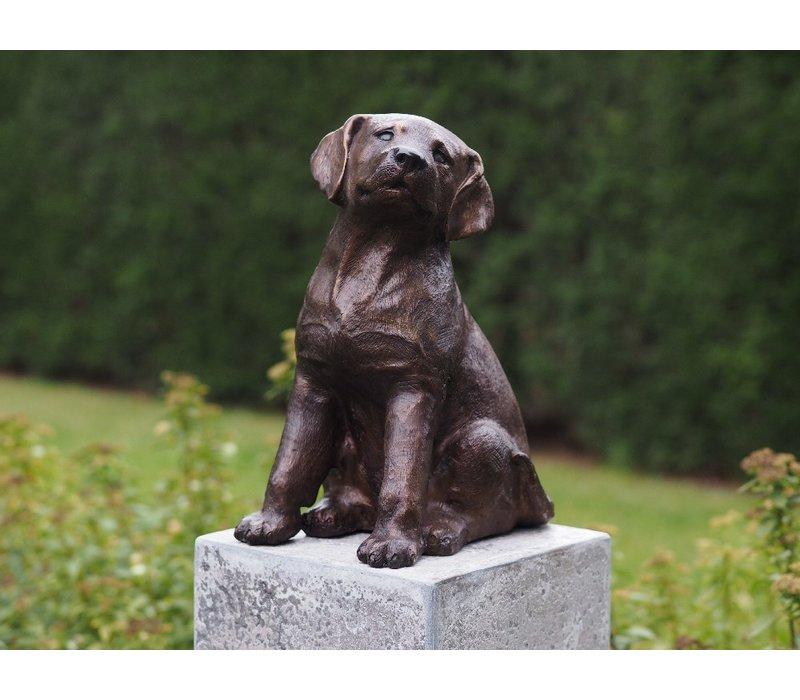 Bronzen Beeld: Puppy wordt zonder sokkel geleverd