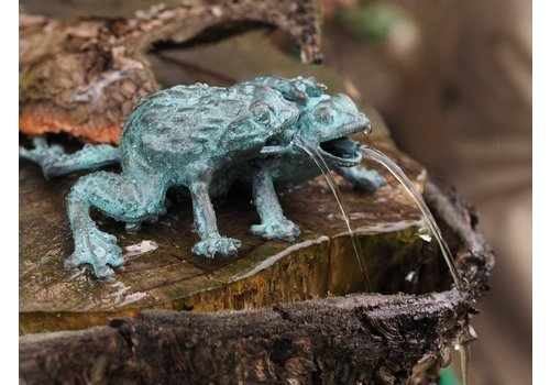 BronzArtes Bronze statue: Two frogs as a fountain