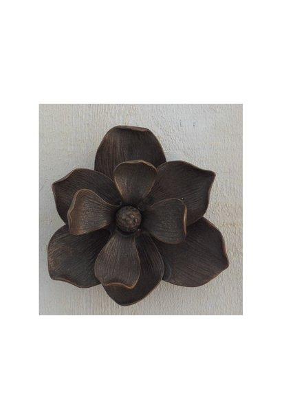 Türklopfer-Blume