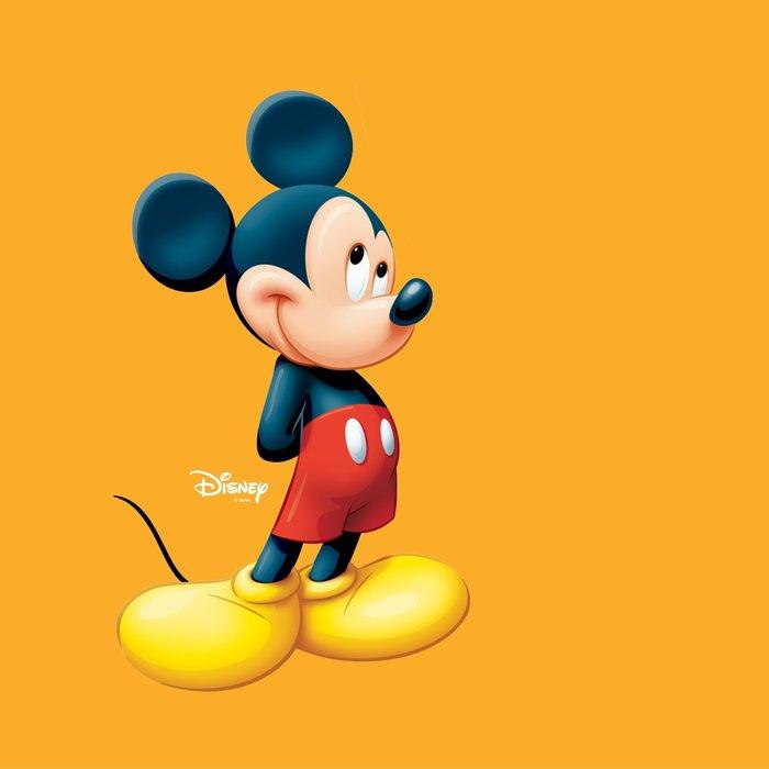 Disney Couture Kingdom