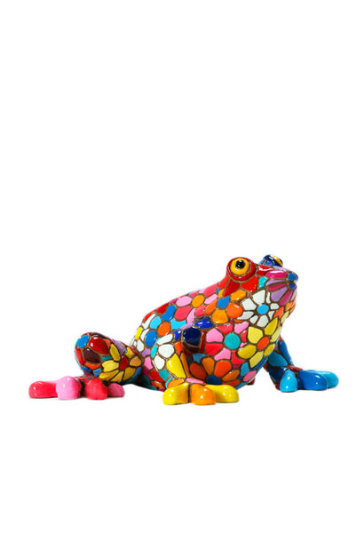 Frog in Flower Mosaic