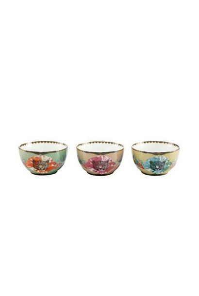 Leopard Blue, Red, Pink - Bowl Set