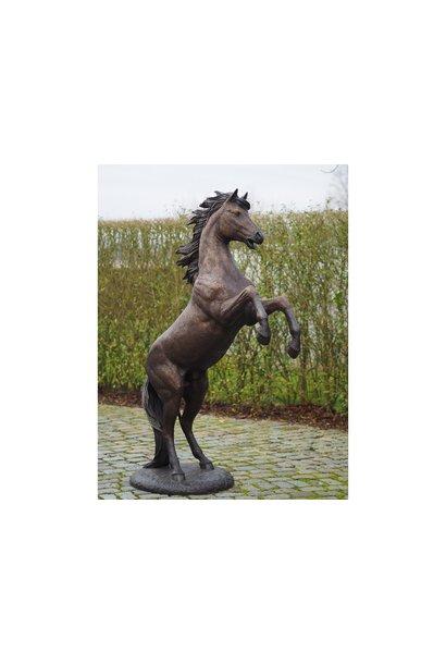 Steigerend paard 183 cm ruw