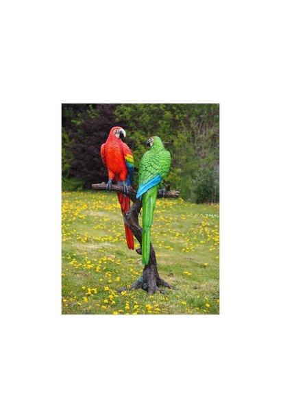 2 Farbige Papageien am Baumstamm
