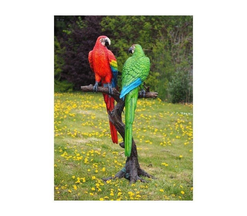 2 Gekleurde papegaaien op boomstam