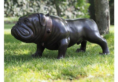 BronzArtes Bulldogge