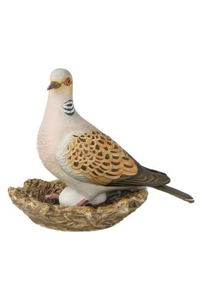Vogel des Jahres 2020: Turteltaube grosse¸