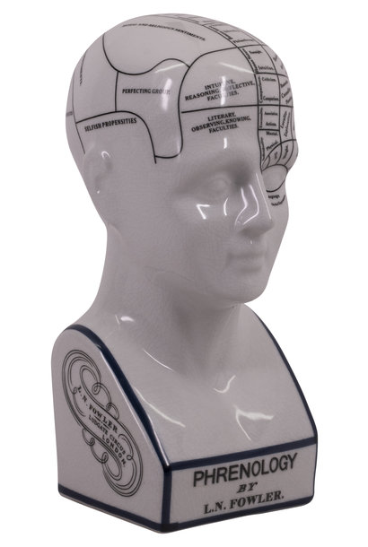 Phrenology Head Small