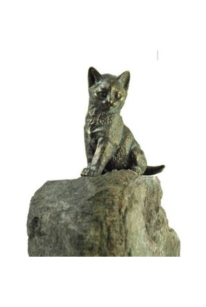 Young cat sitting on granite