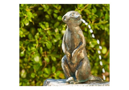 Bronze Art Meerkat medium Fountain