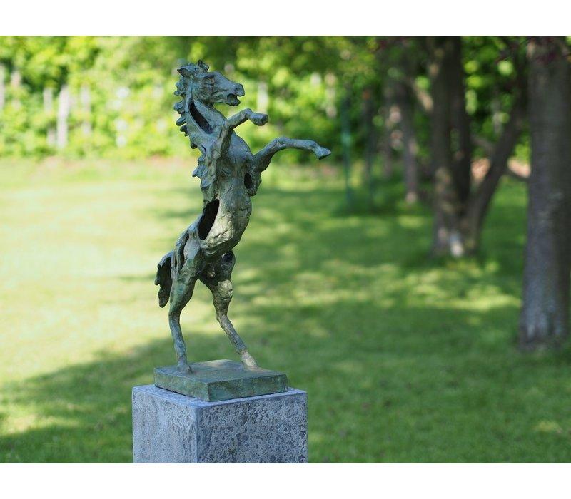 Steigerend paard modern