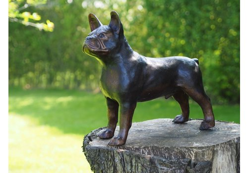 BronzArtes Bulldog