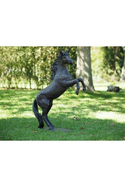 Wütendes Pferd
