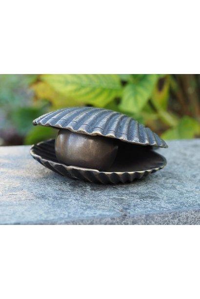 Kleine Urn Muschelform