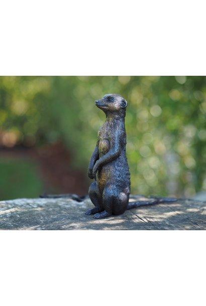 Bronze meerkat