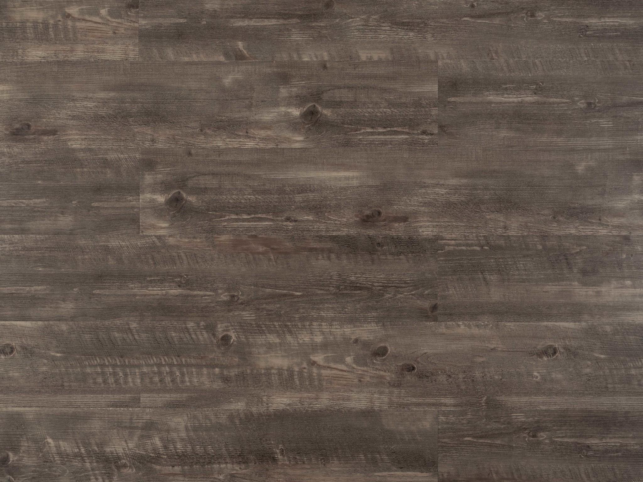 Tajima TRN-6650 American Grey